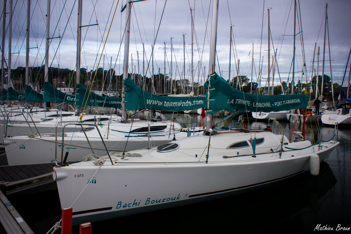 Les voiliers de cette flotte étaient tous baptisés d'une insulte du capitaine Haddock